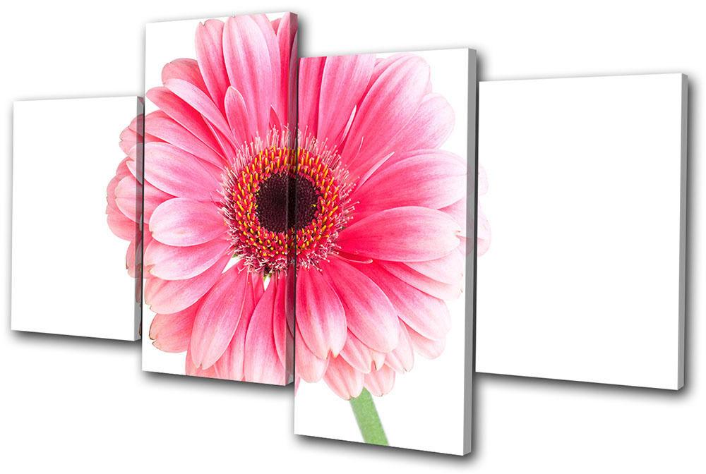 Floral Floral Floral Gerbera Flowers MULTI TELA parete arte foto stampa a94e80