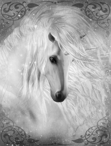 "Beautiful Unicorn Flowing mane CANVAS PRINT horse fantasy poster BW 24/""X18/"""