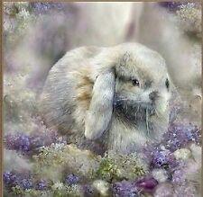 Cute Dwarf Lop Rabbit Diamond Mosaic Painting Kit 30cm x 30cm like cross stitch