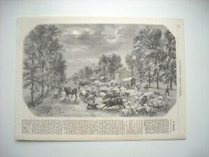 Gravure 1861 Le Marche Des Bestiaux A Paris Retour Du Marche De Poissy Ebay
