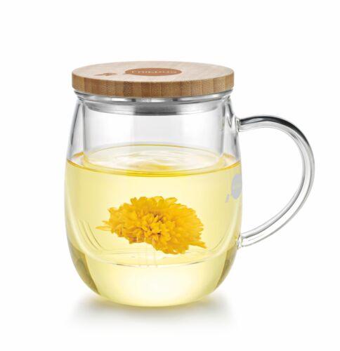 Friedos Teeglas mit Sieb - Tee Glas mit Filter und Deckel - Teetasse 500 ml