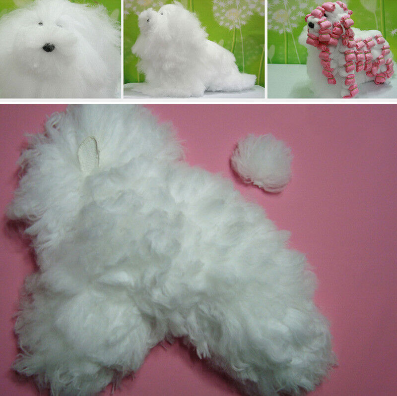 Dog Wig Only for Wrapping Grooming Practice, Training for Groomers Professional