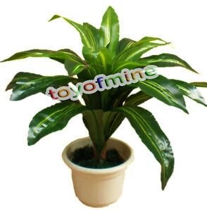 Brazil tree 24 leaves lifelike artificial plants tree home for Real plants for home decor