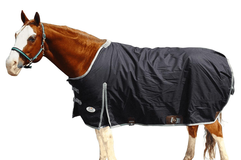 Derby Originals 600D Ripstop Waterproof Heavyweight West Style Horse Blanket