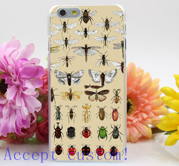 Entomology Insect Studies Collection Hard Phone Cases for iPhone 5s 6s 6plus 7