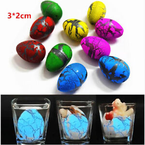 6PCS Eggs Dinosaur Growing Add Water Hatching Egg Kids Toy Educational Toys