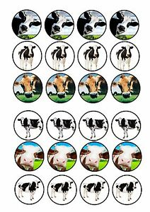 24-Edible-cake-toppers-wafer-rice-paper-cute-funny-dairy-cows