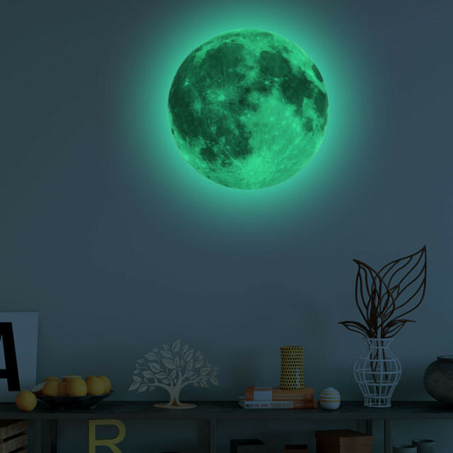 Wall Art Glow in the Dark Owl and Moon Vinyl Wall Stickers Wall Decals