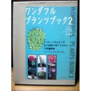 Bonsai-Wonderful-Plants-book-lt-2-gt-Cactus-amp-Succulent-Air-plants-carnivorous