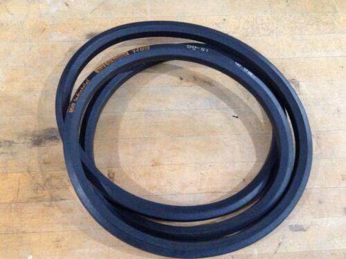 MVP Industrial BB81 Replacement Belt