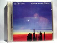 Eddie Brickell picture perfect morning Geffen Records 1994 DEBUT