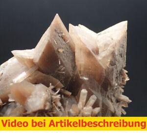 7239-Gypsum-twins-2-generations-ca-5-7-11-cm-Ebensee-Osterreich-1987-MOVIE