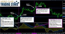 World Class Trading Stars Madam Lim- Forex Trading System MT4