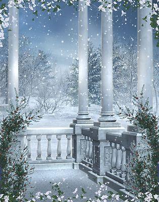 3x5ft Vinyl Photography Backdrops Winter Snow Palace Backgrounds Studio Props