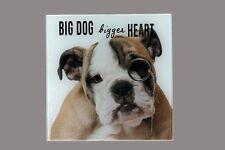 Deko-Glaswandbild 20 x 20 cm,Hund mit Monokel Wandbilder Hunde  Wandbild