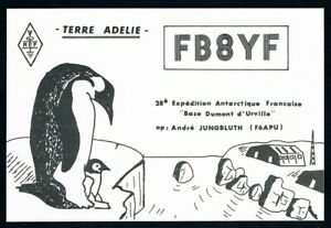 French-Antarctic-Territory-1978-QSL-Postcard-Terre-Adelie-Penguins
