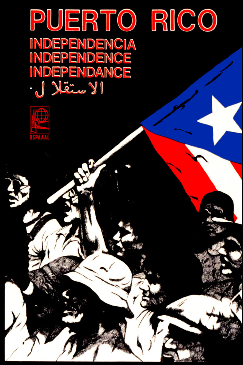 16x20 Decoration CANVAS.Room design.Political Puerto Rico independence.6507