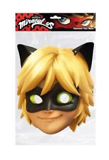 Cat Noir from Miraculous Single 2D Card Party Face Mask ladybug Adrien Agreste
