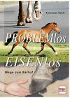 Problemlos Eisenlos von Konstanze Rasch (2013, Gebundene Ausgabe)