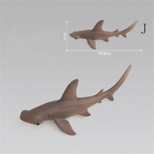 Action- & Spielfiguren Ozean Sea Life Tiere Wal Schildkröte Shark Modell Kinder pädagogisch CN