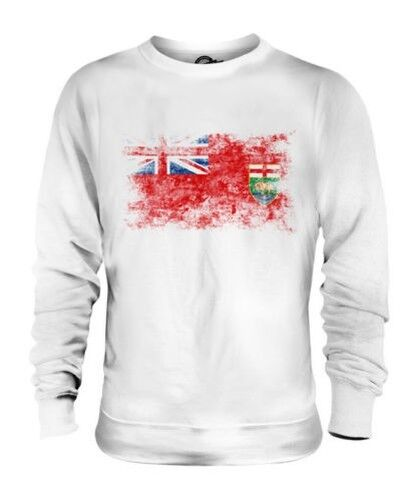 Manitoba Drapeau Délavé Unisexe Pull Manitobains T-Shirt Jersey Cadeau