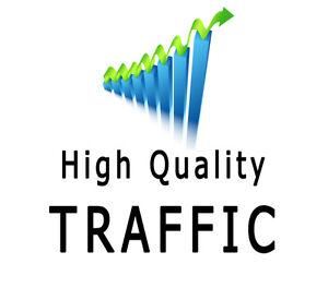 Get 30 Days UNLlMITED Web Traffic