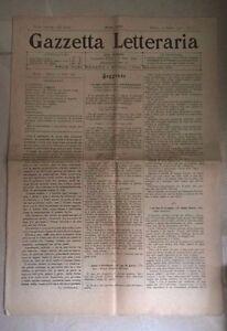 GAZZETTA LETTERARIA 1902 VITALI GUIDI FASINI BERTACCHI PICOZZI RAMPOLDI RISI