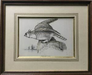 Animal Portrair Bubo arcticus Virginia Eagle Owl Owl Bird Litho America 32 x 40