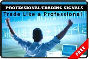 Proffesional forex trader yearly profit
