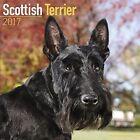Scottish Terrier Calendar 2017 by Avonside Publishing Ltd.