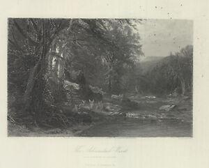 "1874 engraving ""The Adirondack Woods"""