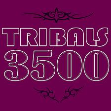 3500x Tribales Tattoovorlagen Tribals Tattoo Vorlagen Tribal Collection DONWLOAD