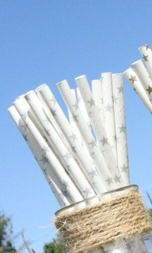 20 Silver Star Paper Straws Parties Christmas Birthday Eco Friendly RETRO