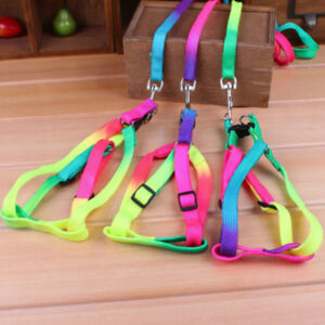 Pet-Dog-Cat-Puppy-Colorful-Special-Adjustable-Harness-Lead-Collar-Leash-Nylon