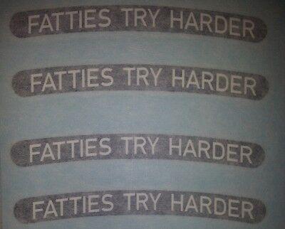 "FAT TIRE bike rim decals  /""Fatties are Fun!/"" Borealis SurlyTrek Farley Fatty BIG"