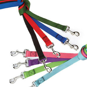 Nylon-Dog-Leash-Guardian-Gear-USA-Seller-8-Colors-3-Sizes-Durable-Puppy-Lead