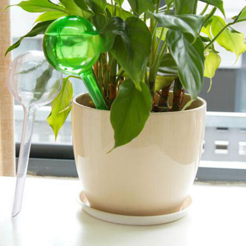 Plastic Automatic Self Watering Globe Device Tool S//L Plant Pot Bonsai Decors