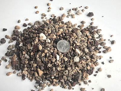 3 5 Gallons Inorganic Soil Mix Bonsai Soil Large Particle Pumice Turface Lava Ebay