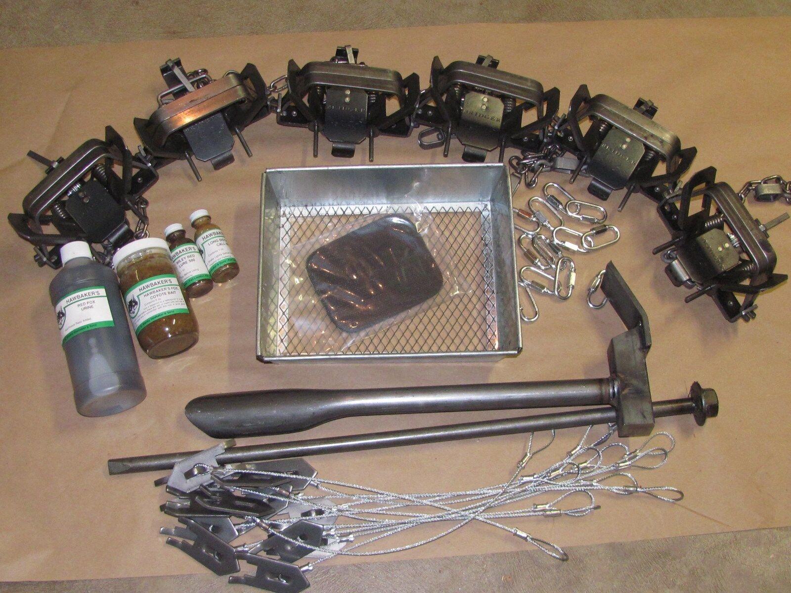 Fox caza con trampas paquete 6 Bridger coilspring Kit Fox Coyote mapache Nueva Venta