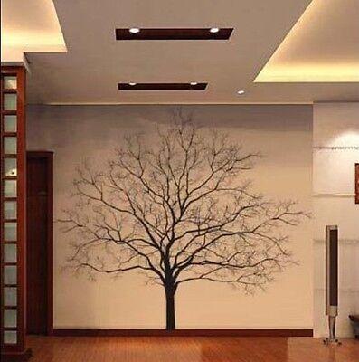 Big Tree Vinyl Wall Decal Nature Art Sticker T45