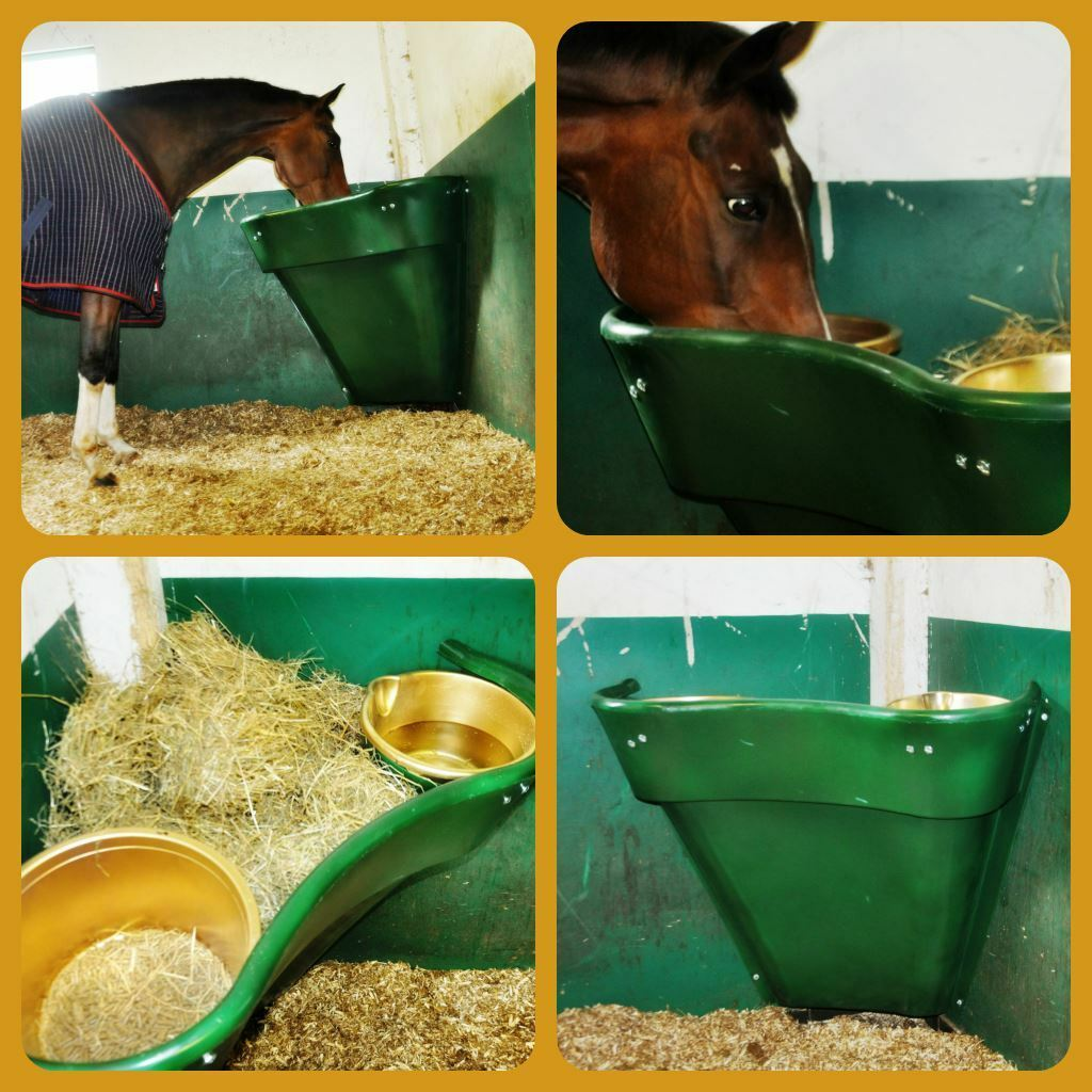 The All In One Feeding Station-Corner Slow Feeder for the stable - Free Shipping