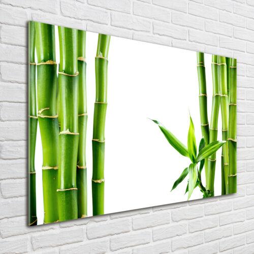 Glas-Bild Wandbilder Druck auf Glas 100x70 Deko Blumen & Pflanzen Bambus