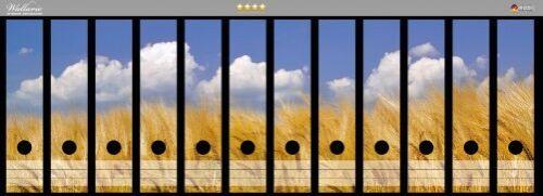 Wallario Ordnerrücken selbstklebend für 12 breite Ordner Kornfeld blauer Himmel