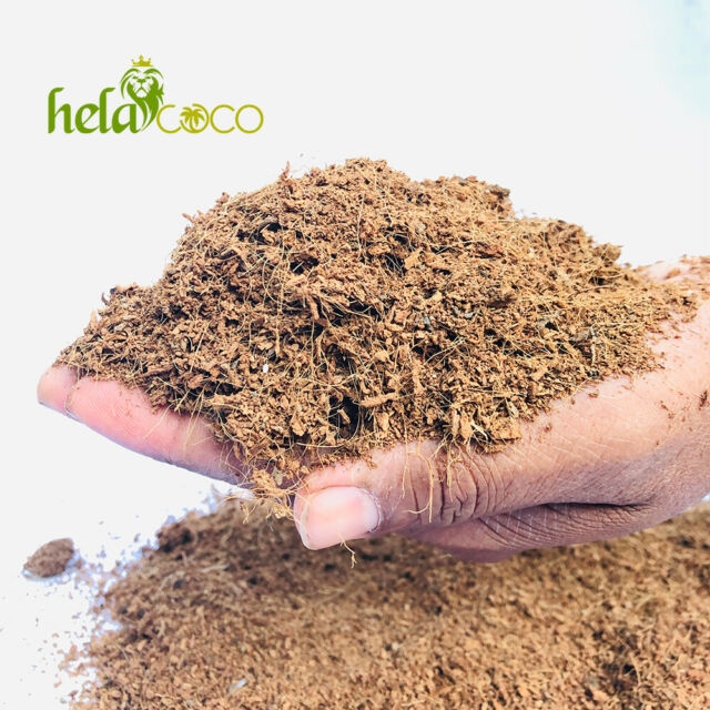 Coconut Coir Fiber Grow Media 3 Pack of Blocks Brick Natural Coconut Peat
