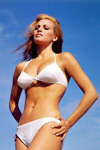 raquel welch stunning bikini 36x24 poster print | ebay