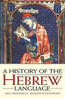 A History of the Hebrew Language by Angel Saenz-Badillos (Paperback, 1996)