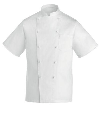 GIACCA CUOCO REX MANICA CORTA 100/% COTONE EGOCHEF CHEF JACKET 厨师