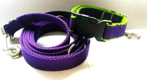Perros correa y adecuado cuello para perro banda ajustable de forma continua en el set-combi paquete