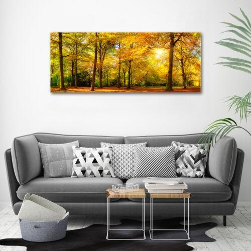Glas-Bild Wandbilder Druck auf Glas 125x50 Deko Landschaften Herbstwald
