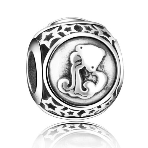 European Charms Constellation Logo Bead Fit 925 Silver sterling Bracelets Chain